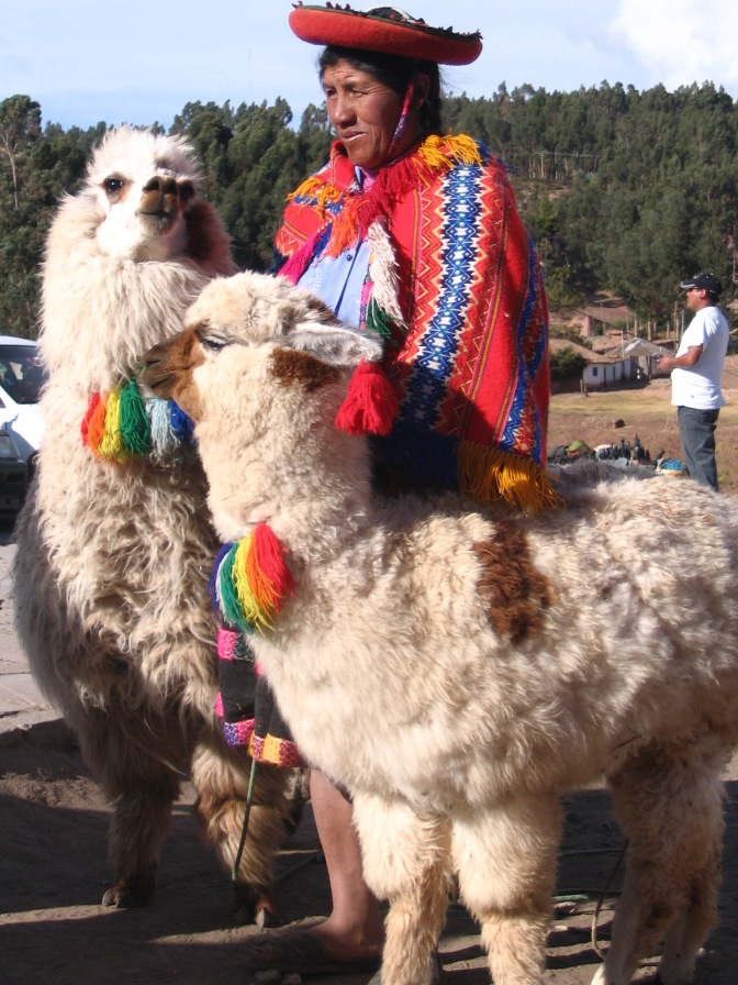 The alpaca on the left makes me think of a 1930s movie star, ready for her close-up.