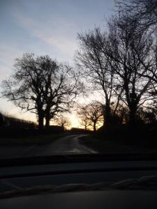 Our favourite route. It's so pretty.