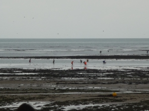 As their ancestors did before, the people of Bernières-sur-Mer collect their dinner from the sea.