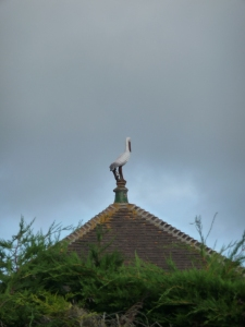 And always, the stork on the roof watches.