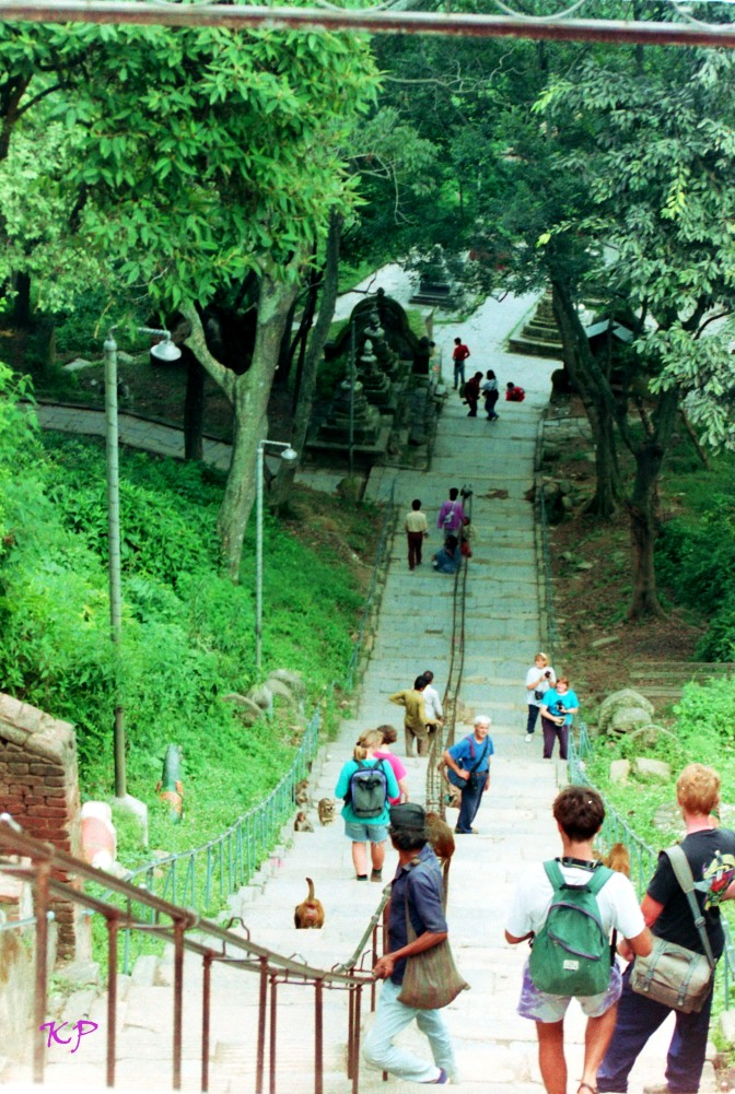 There are 365 steps at the entrance to Swayambunath, used by all pilgrims who come here.