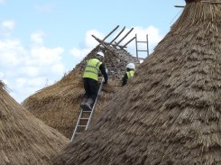 Thatchers at work in an Iron Age village near Stonehenge.