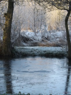 The Frost performs its secret ministry, Unhelped by any wind. ~ Samuel Taylor Coleridge, 1772-1834, Frost at Midnight
