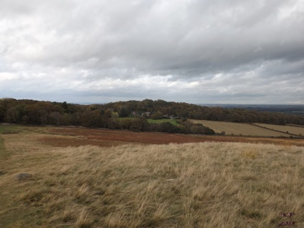 Looking northeast-ish to Swithland Wood, on the edge of Charnwood Forest.