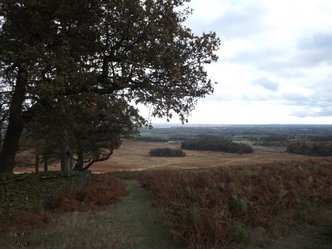 On the other side of Old John's Wood, you look southward, over Sheet Edges Wood, past Groby and on to Kirby Muxloe.