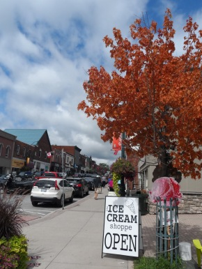 The vivid colours of the tree caught my attention on a visit to Bracebridge, Ontario last summer.