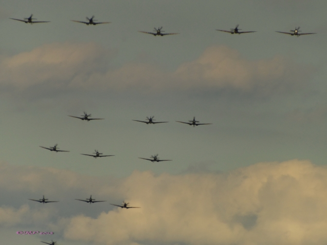 Spitfires Honour