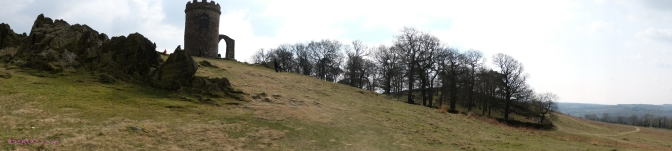 Bradgate's Tower