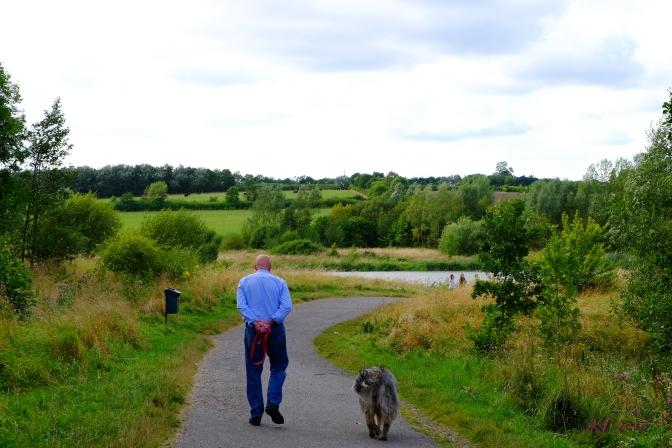 Mid-day walk.