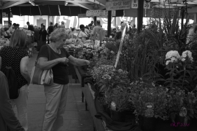 She pauses at the flower stall during her lunch break to consider which one to add to her garden this week.