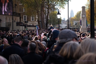 Whitehall was packed, but the screens made sure everyone could see.