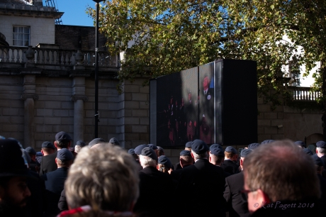 Further up Whitehall toward Trafalgar, this group of veterans watch the ceremonies.