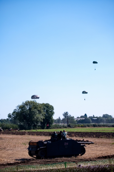 Paratroopers Drop from the sky to the trees below