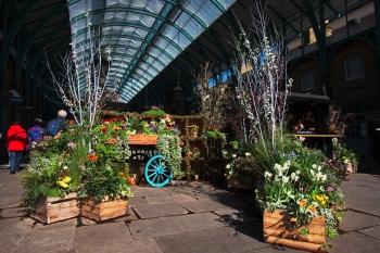 Covent Garden - Eliza Doolittle anyone?